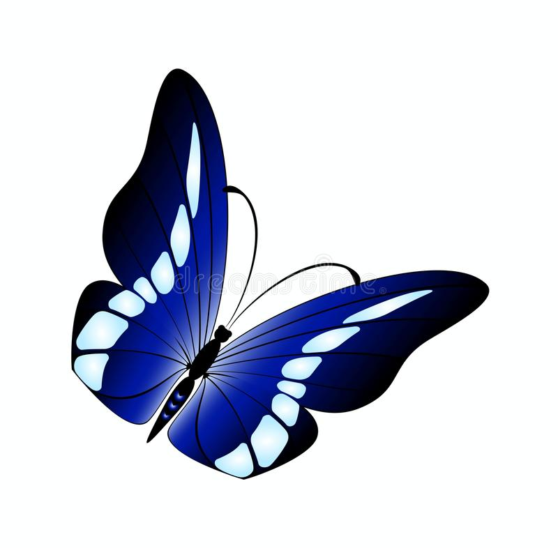 Download Beautiful butterfly stock vector. Image of graffiti, lives - 10297408