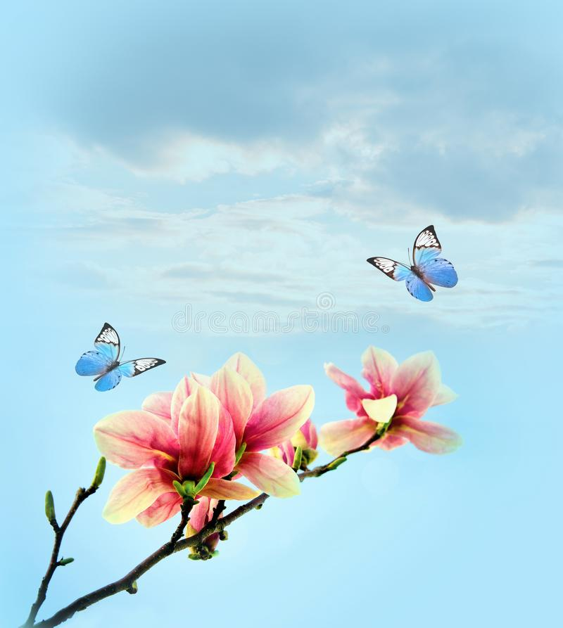 Yellow Butterfly Pink Flower Teal Sky Country Home Decor Art Matted Picture A243