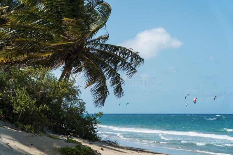 Beautiful cabarete beach royalty free stock images