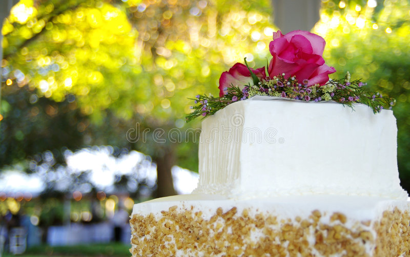 Beautiful cake royalty free stock photography