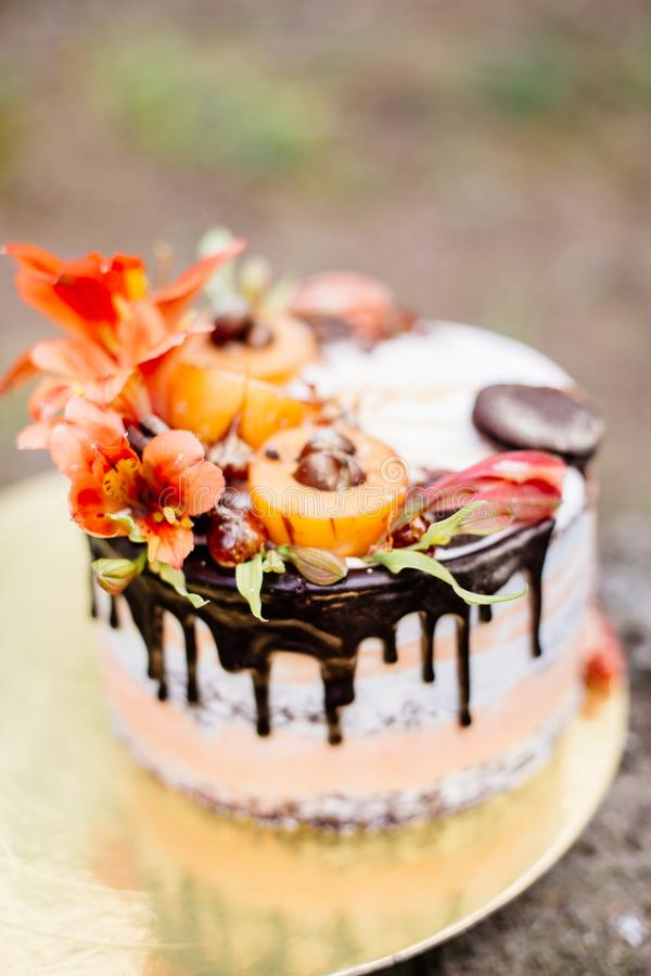 Beautiful cake with decor. stock images