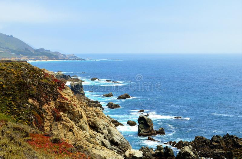 California Beach. Beautiful California beach with sand dunes covered in flowers royalty free stock images