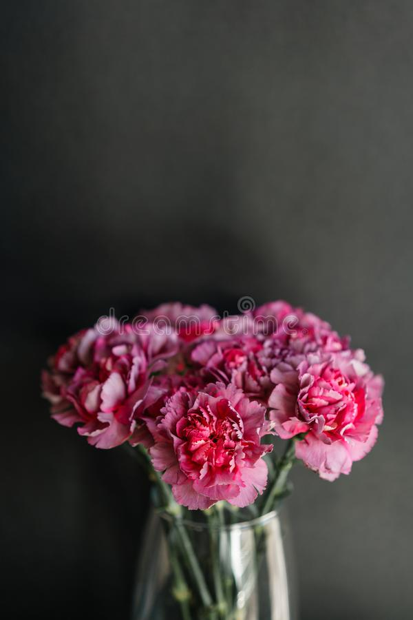Beautiful carnation flowers in a vase on a table . Bouquet of violet, purple and pink multicolor flower. Decoration of. Home. Wallpaper and background stock photography