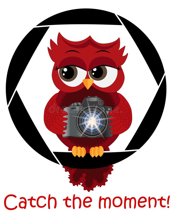 A beautiful cartoon red owl with a camera sits on the camera\'s diaphragm. Concept photography, vocations, photo business. Inscription Catch the moment stock illustration