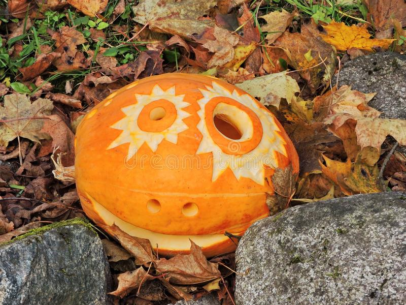 Orange halloween pumpkin stock images