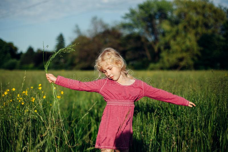 Beautiful Caucasian girl in tall grass on meadow at sunset. Cute adorable beautiful Caucasian girl walking dancing in tall grass on meadow at sunset. Happy royalty free stock photo