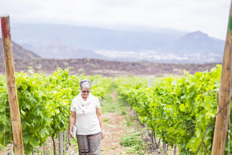 Beautiful caucasian senior adult woman walk in the country yard near the new next wine production. loneliness and vacation for stock photo