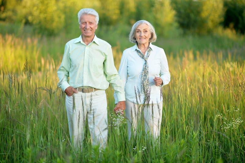Beautiful caucasian senior couple in the park royalty free stock photos
