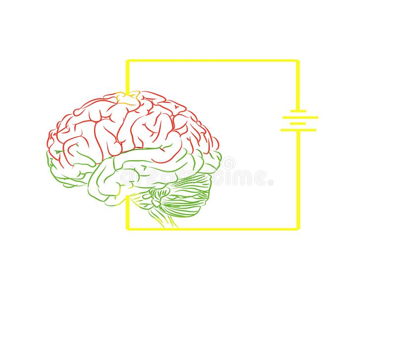 Beautiful charger brain pattern white background royalty free illustration