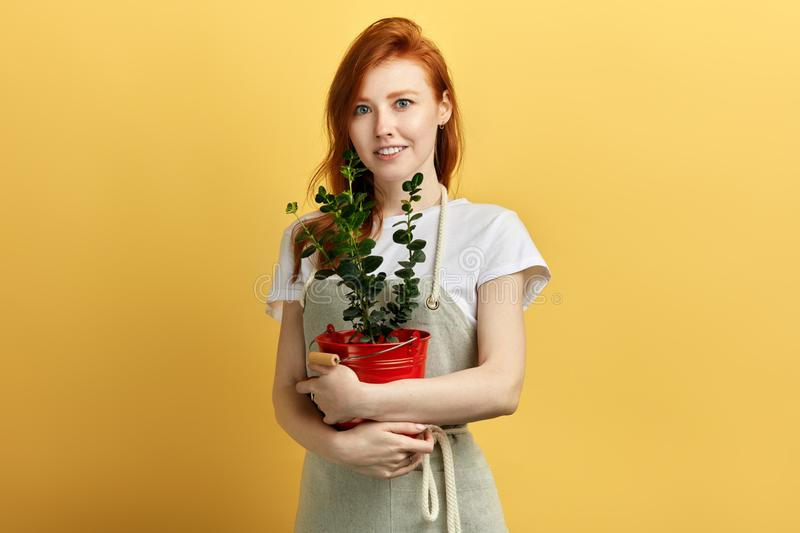 Beautiful cheerful female garderner has grown a flower royalty free stock images