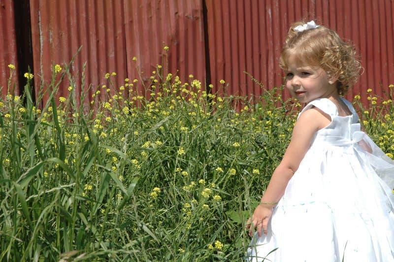 Beautiful Child stock photography