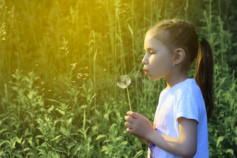Beautiful child blowing away dandelion flower in spring. stock photo
