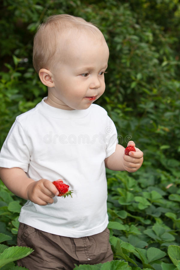 Beautiful child in summer garden royalty free stock photos