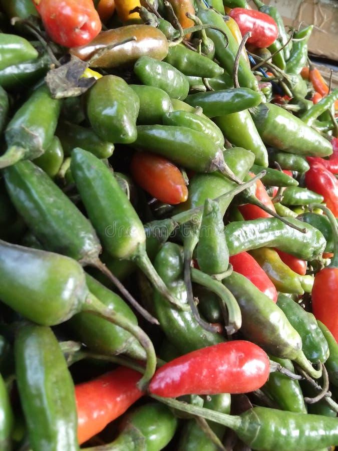 Beautiful chillies royalty free stock photos