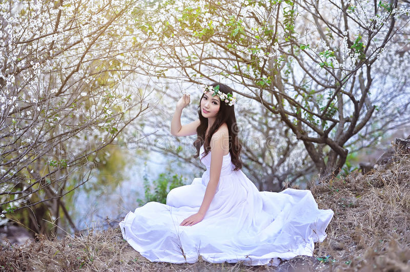 Download Beautiful Chinese Girl In Plum Stock Photo - Image of classical forest 72002966  sc 1 st  Dreamstime.com & Beautiful Chinese Girl In Plum Stock Photo - Image of classical ...