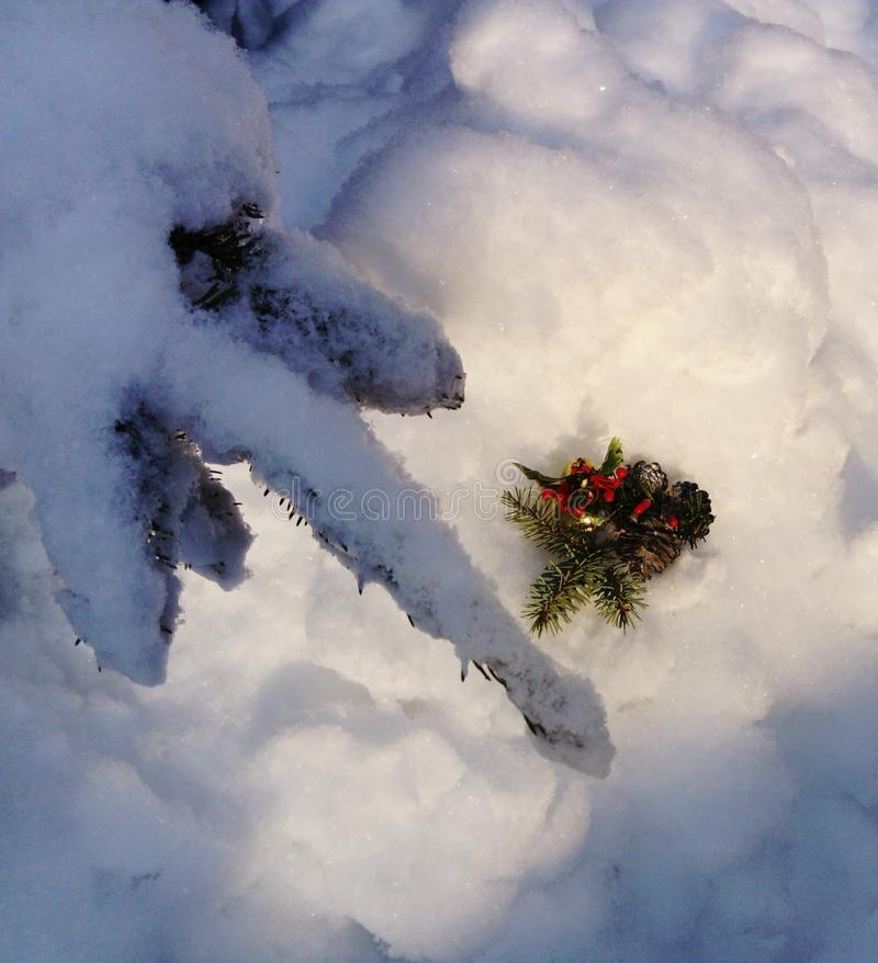 Beautiful Christmas decoration in snow stock images