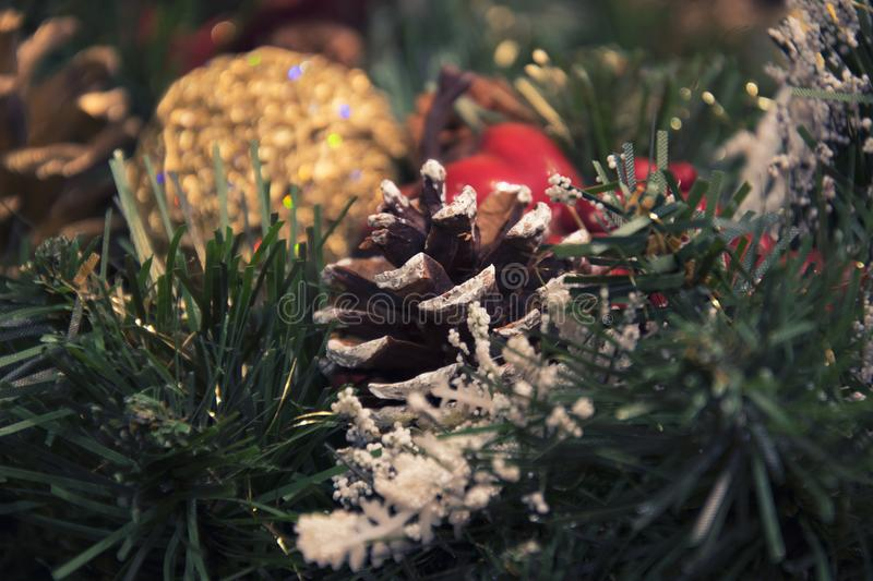 Beautiful Christmas decorations: a cone and branches of a Christmas tree royalty free stock images