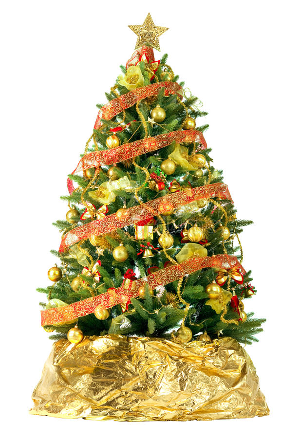 Free Beautiful Christmas Tree Stock Photo - 13009180