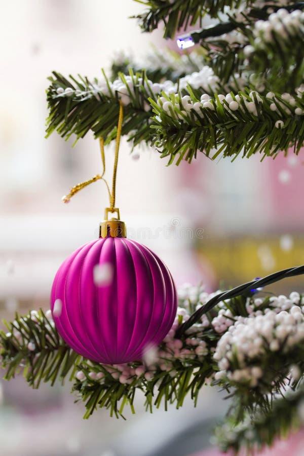 Download Beautiful christmas tree stock photo. Image of christmas - 16862342