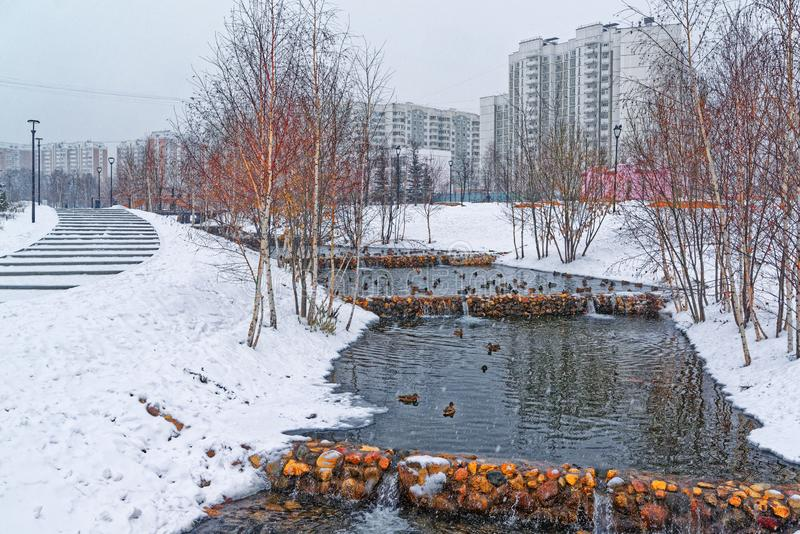 Beautiful city park on the outskirts of the city. Winter, gloomy sky and heavy snow. Ducks hibernate in an unfrozen stream. A beautiful city park on the stock images