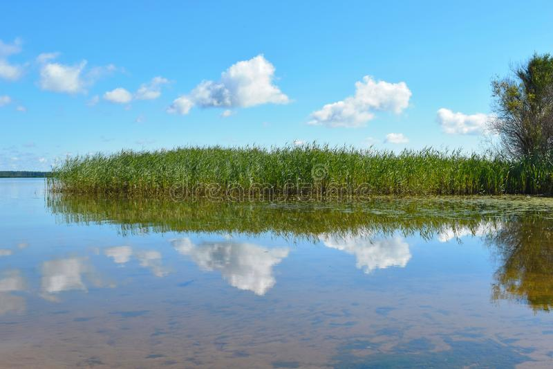 Beautiful clear blue sky with clouds over the lake stock image