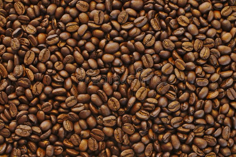 Beautiful closeup shot of brown fresh black coffee beans - perfect background or wallpaper stock image