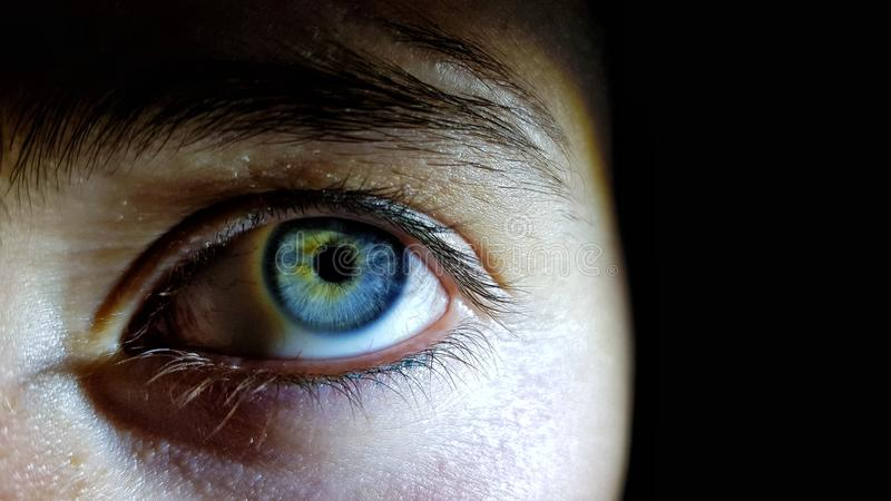 Beautiful closeup shot of a female human`s deep blue eyes stock image