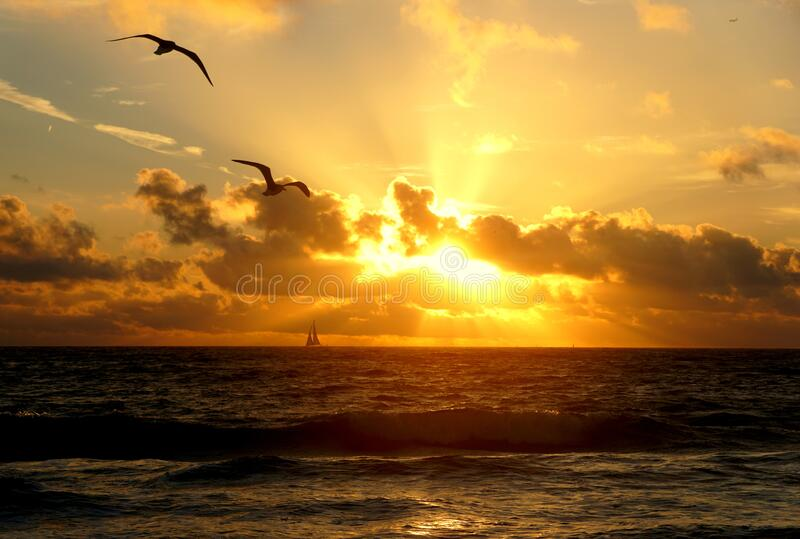 Beautiful clouds during sunrise at Fort Lauderdale Beach, Florida, U.S.A royalty free stock photos