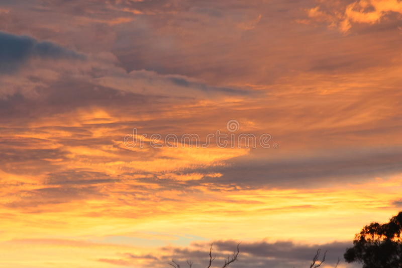 Beautiful Clouds at Sunset. Thin, white patch, sheet, or layered of clouds without shading. They are composed of very small elements in the form of more or less stock images