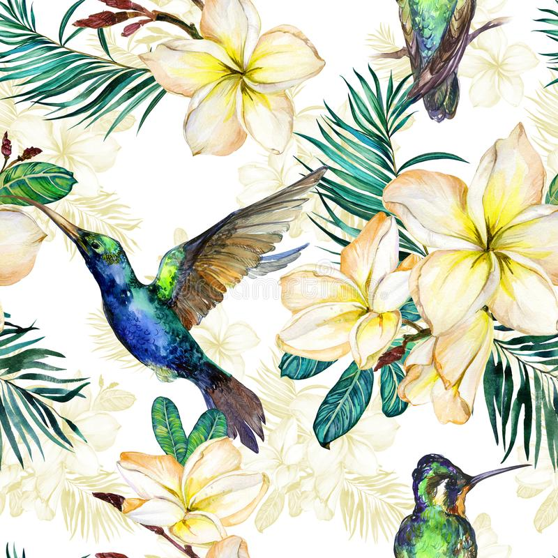 Beautiful colibri, yellow plumeria flowers and palm leaves on white background. Exotic tropical seamless pattern. Watecolor painting. Hand painted illustration vector illustration