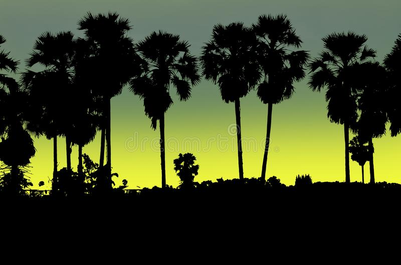 Beautiful moonlight and black sugar palms in the evening stock illustration