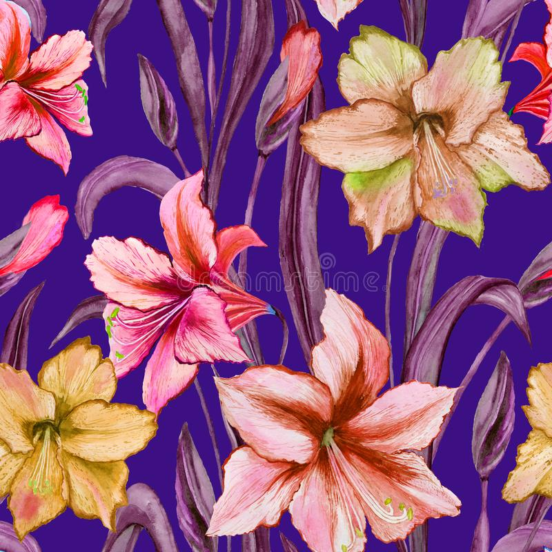 Beautiful colorful amaryllis flowers with purple leaves on blue background. Seamless spring pattern. Watercolor painting. Hand painted floral illustration vector illustration