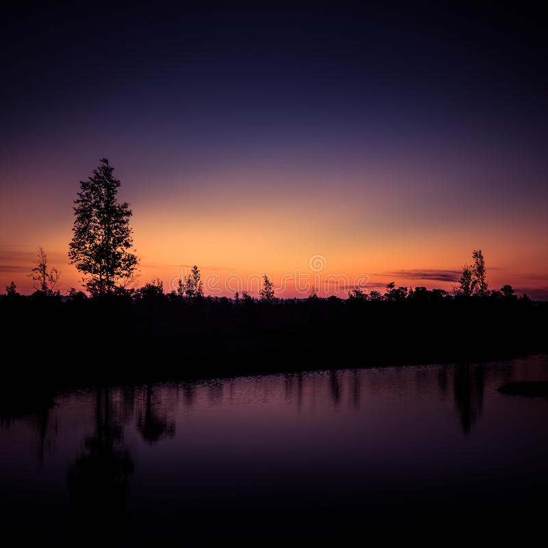 A beautiful, colorful, artistic landscape of a marsh in sunrise royalty free stock images