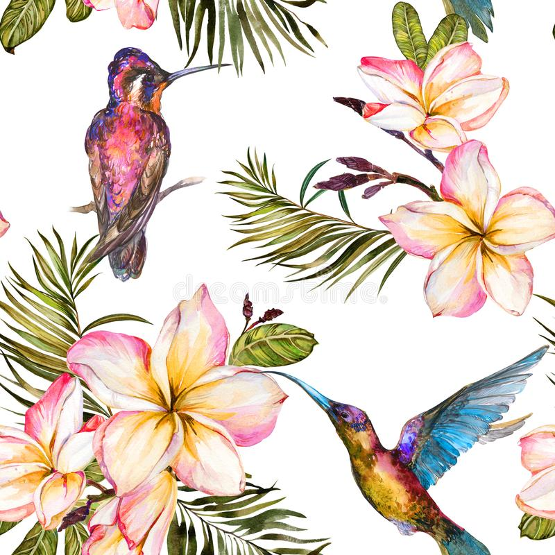 Beautiful colorful colibri, plumeria flowers and palm leaves on white background. Exotic tropical seamless pattern. Watecolor painting. Hand painted stock illustration