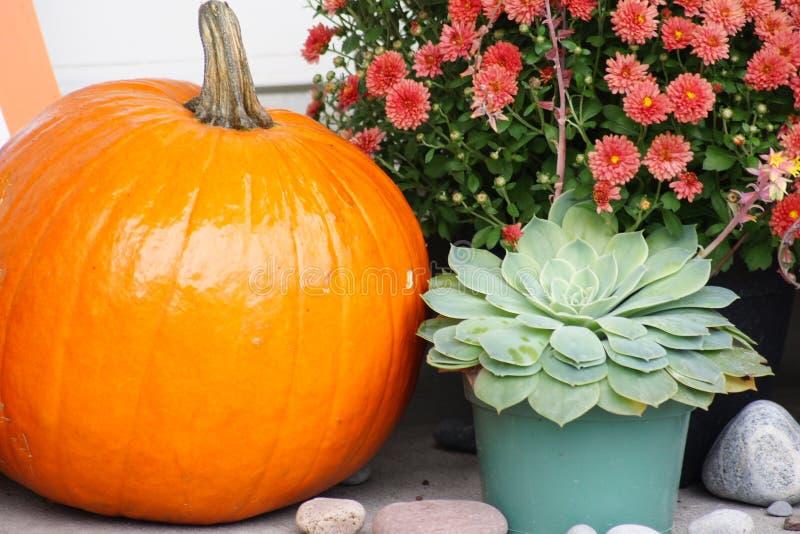 Festive fall display. royalty free stock photos