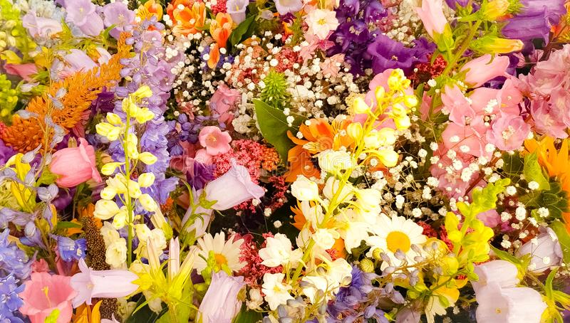 Beautiful colorful flowers bouquet royalty free stock photography
