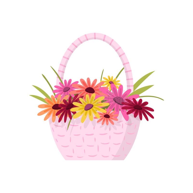 Beautiful colorful flowers composition bouquet in light pink wicker basket over white royalty free illustration