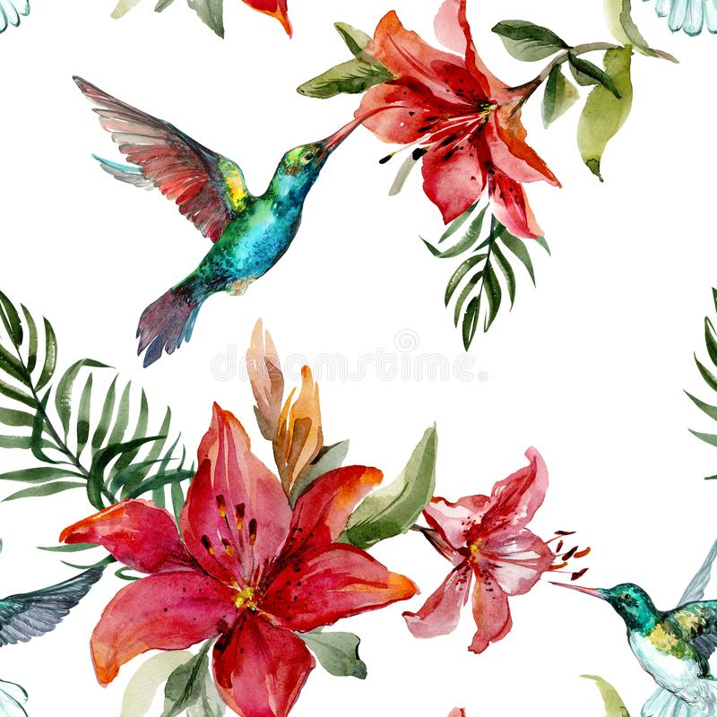 Beautiful colorful flying hummingbirds and bright flowers on whi. Te background. Exotic tropical seamless pattern. Watecolor painting. Hand painted illustration royalty free illustration