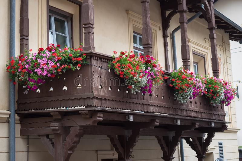 Beautiful colorful geranium flowers on a wooden balcony in Austria royalty free stock photo