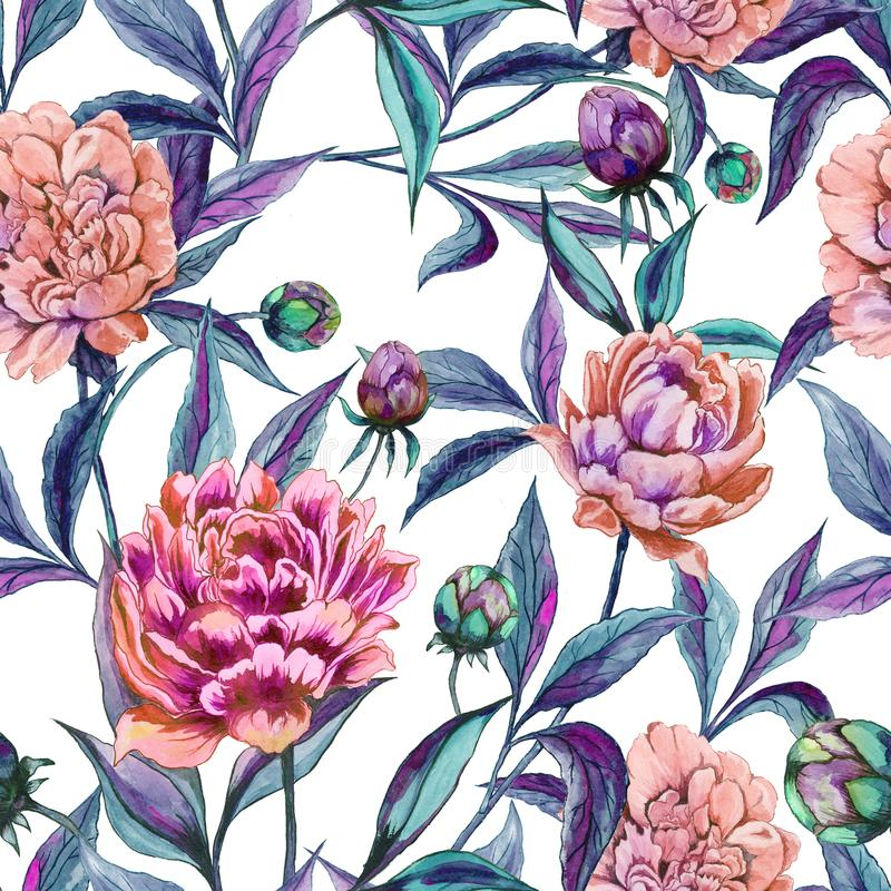 Beautiful colorful peony flowers with green and purple leaves on white background. Seamless floral pattern. Watercolor painting. Hand drawn illustration. Can vector illustration