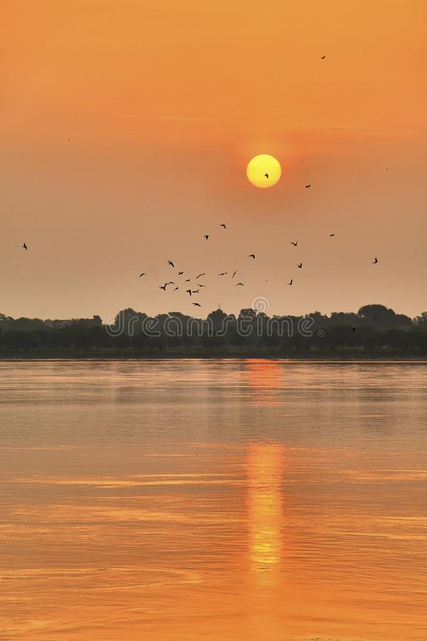 Beautiful colorful sunset over Dal Lake with a flock of birds taken from Nishat Bagh gardens in Srinagar, Kashmir, India royalty free stock image
