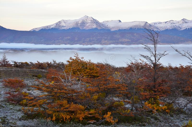 Autumn landscape in Puerto Natales Patagonia Argentina stock photography
