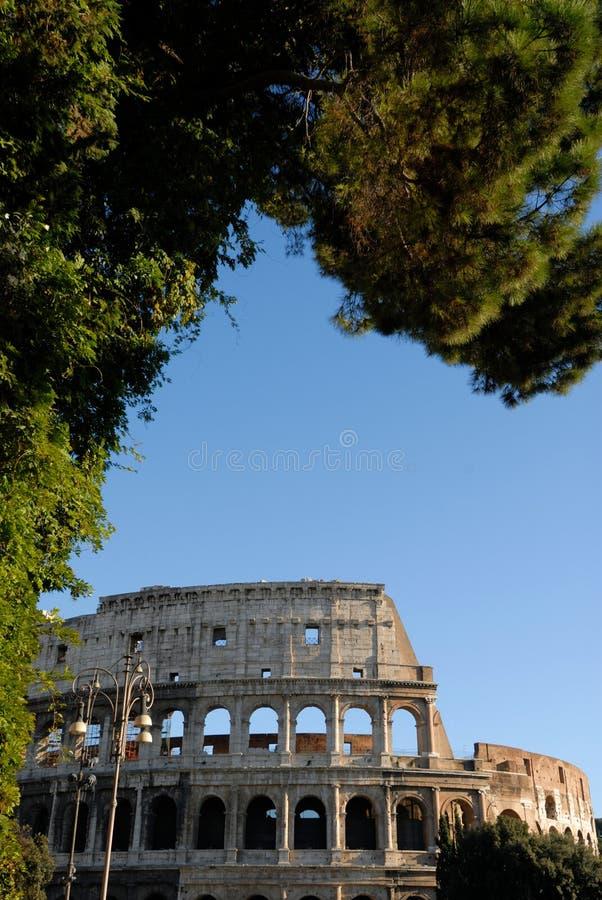 Beautiful colosseum royalty free stock photos