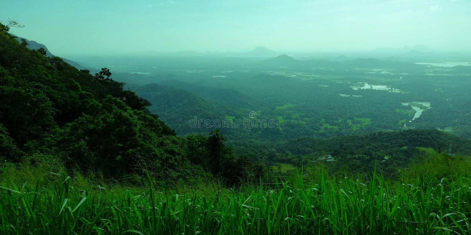 A beautiful and colour full green land. royalty free stock images
