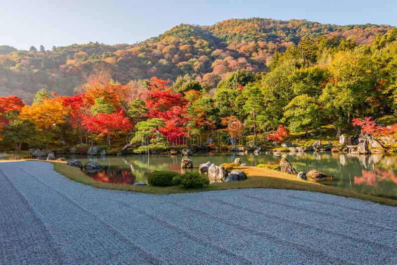 Beautiful colour leaves and reflection in the pond at Tenryuji temple. stock image