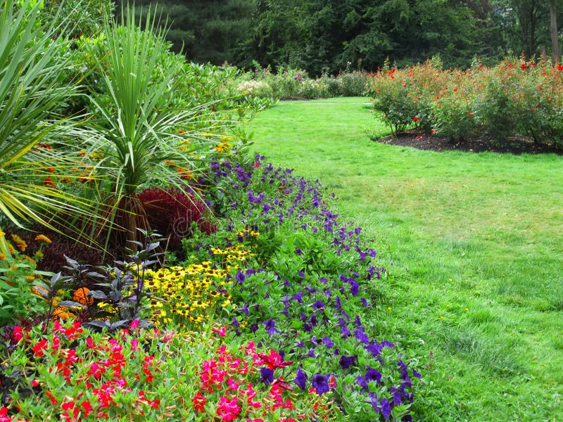 Beautiful Colourful Mixed Flower Bed At Vancouver Stanley Park Perennial Garden In August 2019. Beautiful Mixed Flower Bed At Vancouver Stanley Park Perennial stock photography