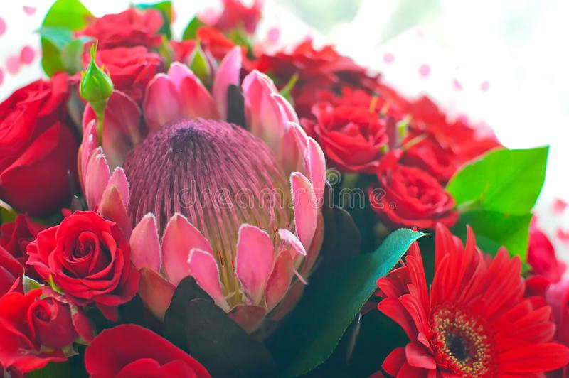 Beautiful combined bouquet of flowers with a protea stock photo