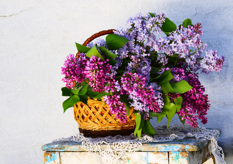 Beautiful composition of flowers in basket stock photos