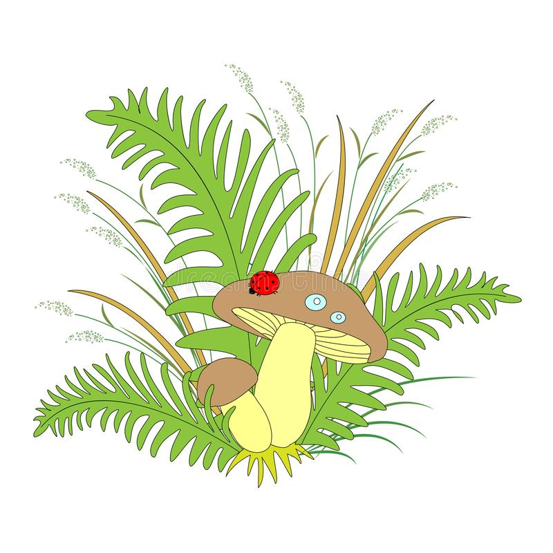 Beautiful composition, juicy grass, mushrooms and cute ladybug. Vector illustration stock illustration
