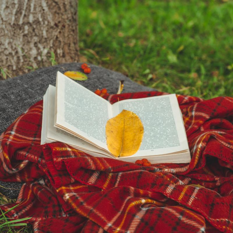 Beautiful composition with old book on natural background. Rainy day, summer or autumn season. Vintage style. soft selective focus royalty free stock image